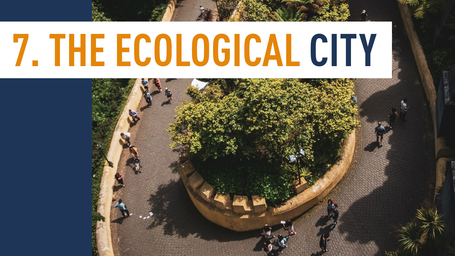 THE ECOLOGICAL CITY
