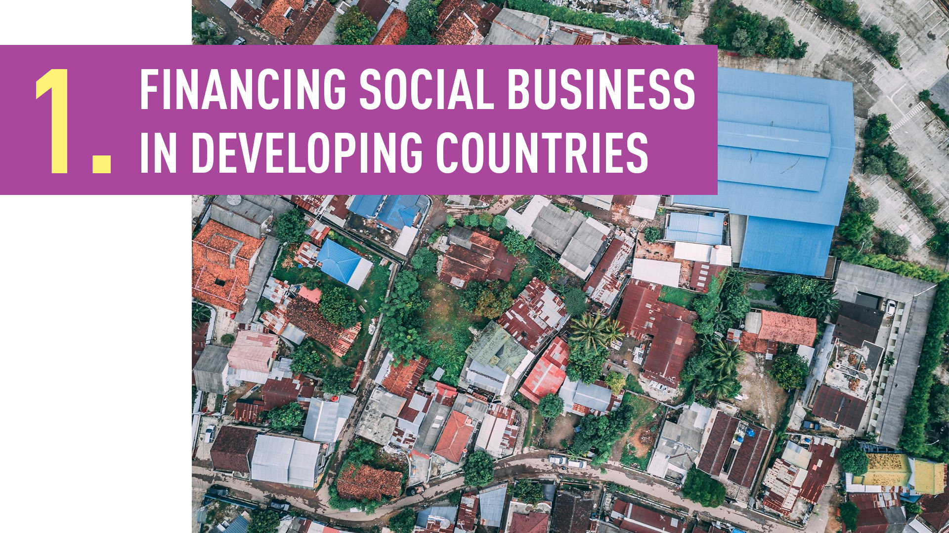 FINANCING SOCIAL BUSINESS IN DEVELOPING COUNTRIES