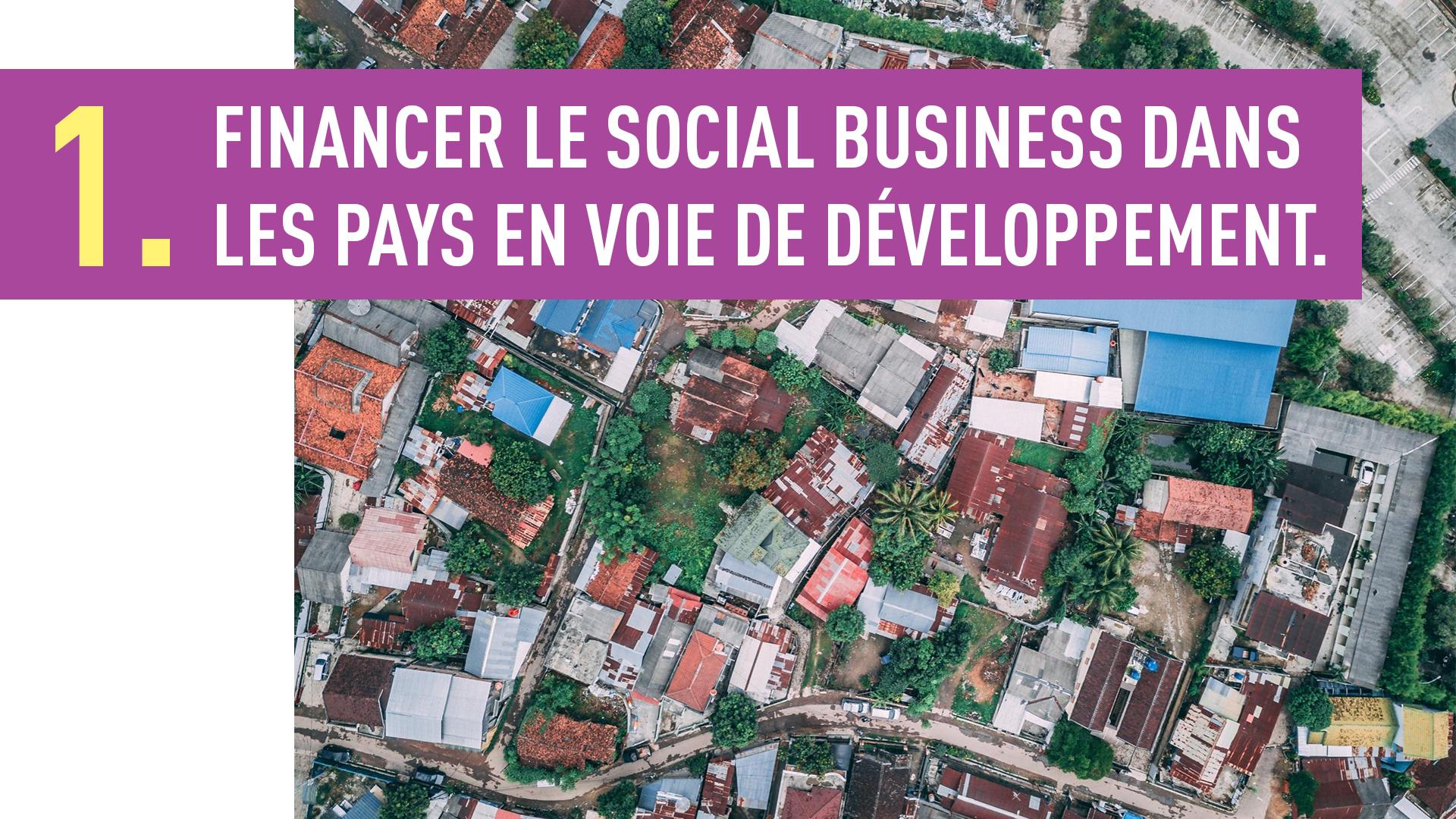 FINANCER LE SOCIAL BUSINESS DANS LES PAYS EN VOIE DE DÉVELOPPEMENT